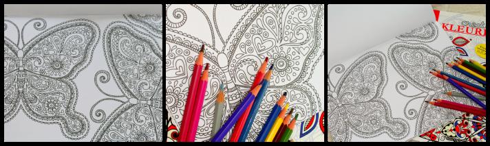 vlinder kleurplaat Creatief kleurboek Action